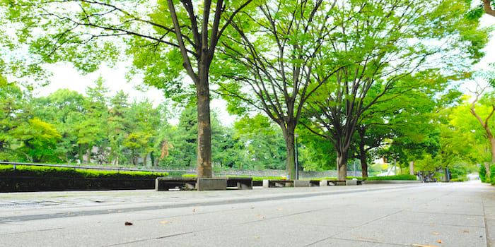 平川橋交差点付近