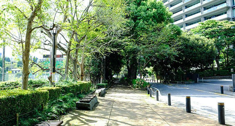 6km弱の皇居ラン アレンジランニングコースガイド  千鳥ヶ淵緑道