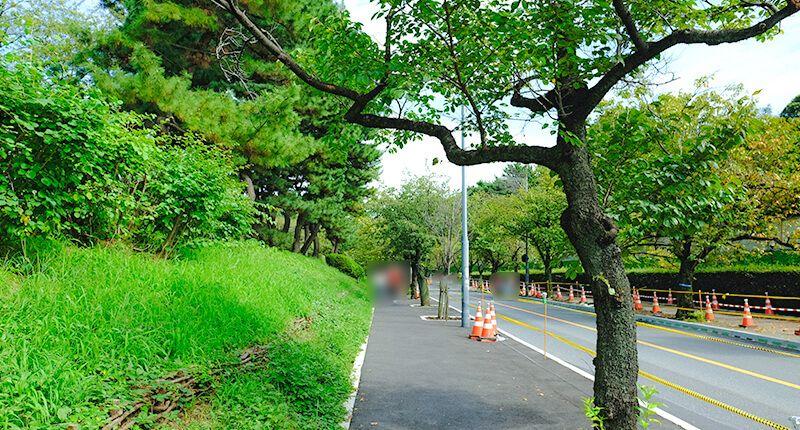 7.8kmの皇居ランニングコースガイド 整備された道
