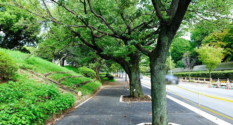 7.8kmの皇居ランニングコースガイド 歩道