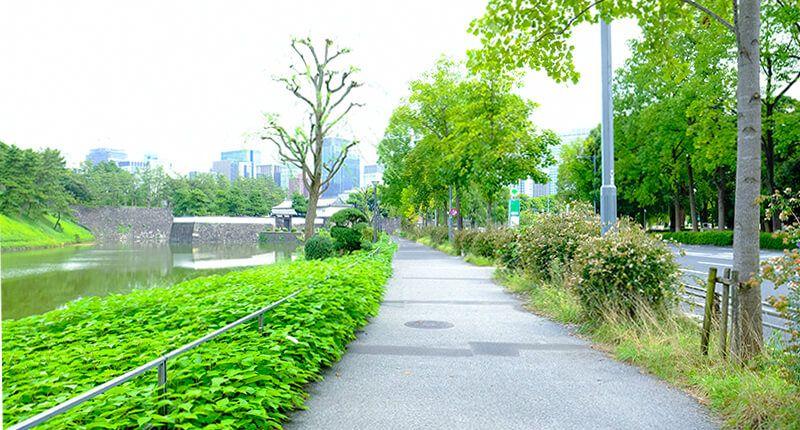 7.8kmの皇居ランニングコースガイド 桜田門手前