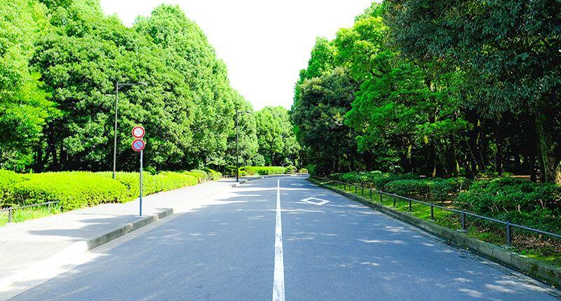 7.2kmの皇居ラン アレンジランニングコースガイド 北の丸公園