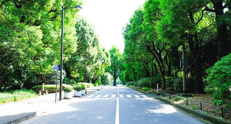 7.2kmの皇居ラン アレンジランニングコースガイド 北の丸公園02