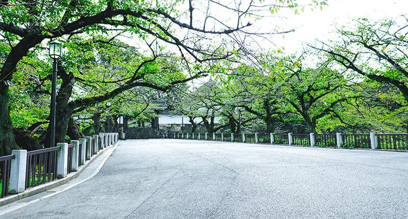 7.2kmの皇居ラン アレンジランニングコースガイド 田安門